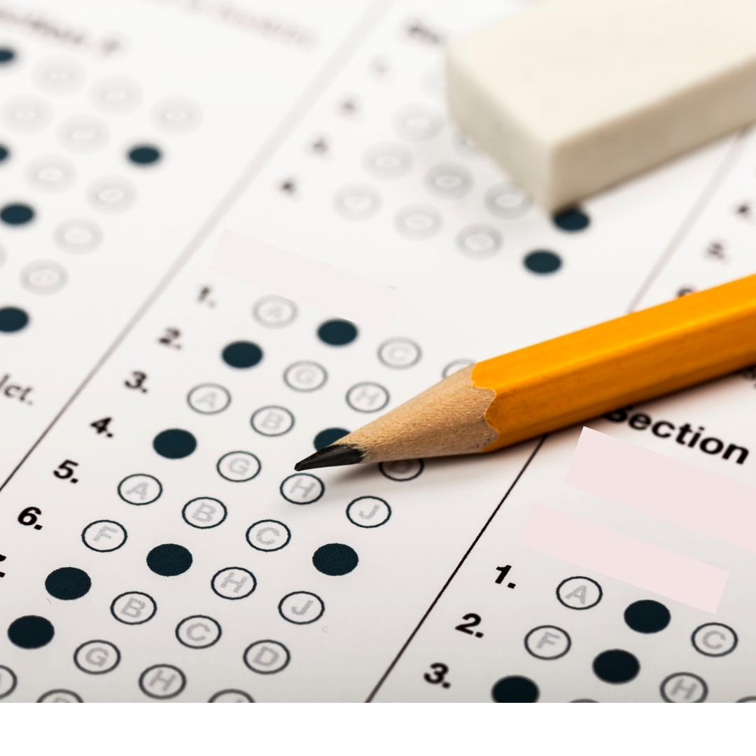özel okul bursluluk sınavı